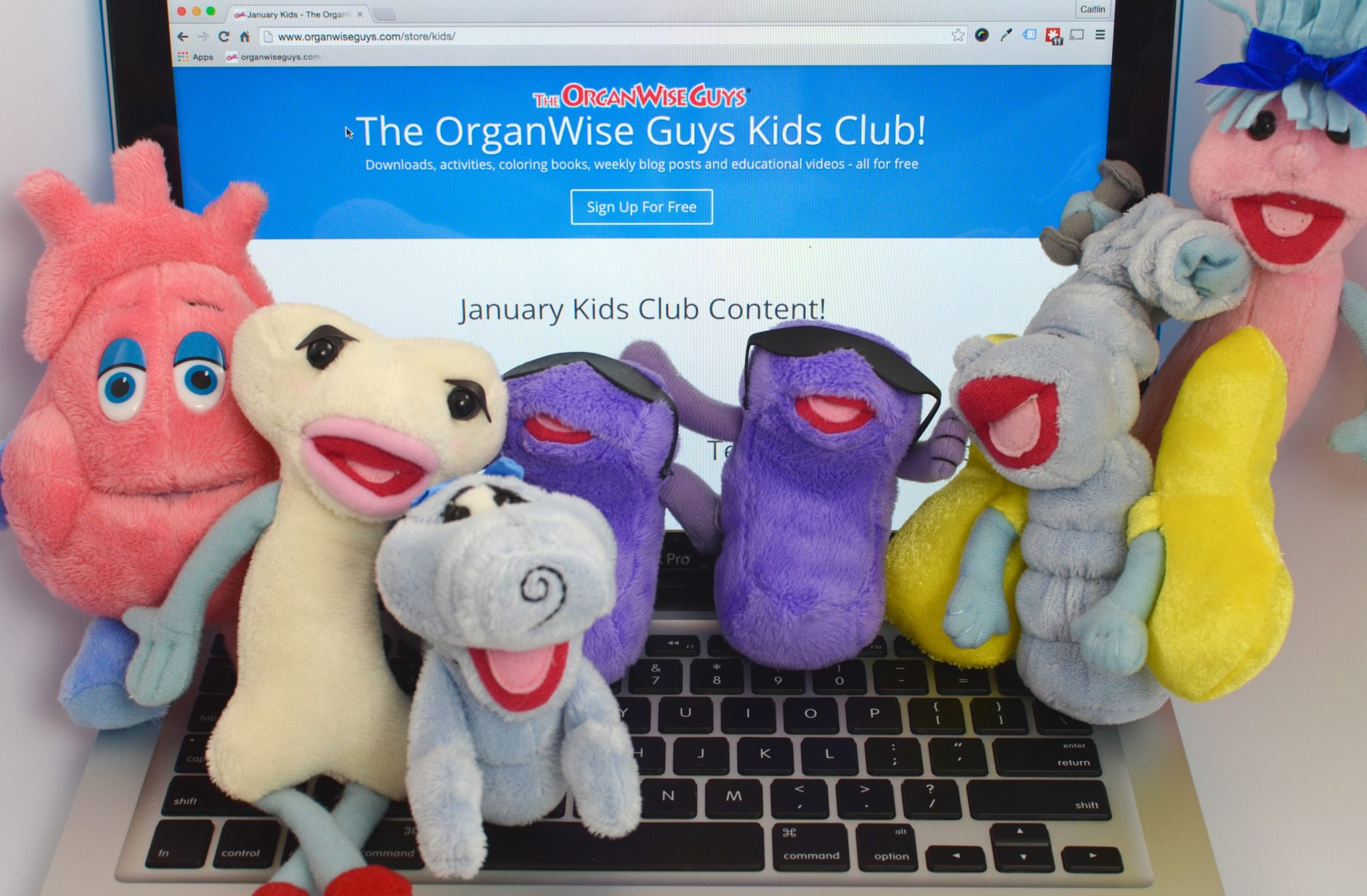The OrganWise Guys Kids Club Image[1]